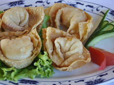 Deep Fried Chicken Wonton